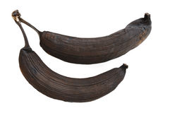 Two Rotten Bananas. Two Rotten Banana Isolated on a White Background Stock Photography