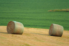 Two round bales on hillside. Two round bales with netting on hill near Schuyler, Nebraska; soybean field in background Royalty Free Stock Photo