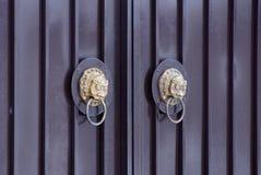 Two brown bronze door handles with a lion head on a metal door stock image
