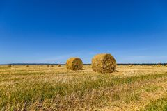 Hay bales. Two round hay bales on the field after haymaking Royalty Free Stock Image