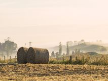 Two round hay bales sitting in a field Stock Photos