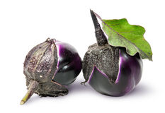 Two round ripe eggplant with green leaf rotated Stock Photography