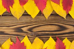 Two row of fallen autumn yellow and red leaves on old worn rustic brown wooden table. With copy space stock image