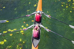 Two rowers  rowing Royalty Free Stock Photo