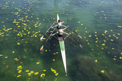 Two rowers  rowing Royalty Free Stock Photography