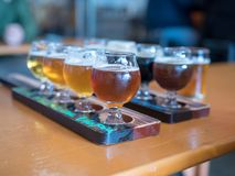 Two rows of beer flights at a bar stock images