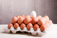 Two rows of brown eggs in a tray on top of one white egg on a li Stock Photo