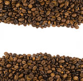 Two rows of coffee beans Royalty Free Stock Images