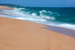 Two rows of the footprints on the sand paradise beach in Tangall. E, Sri Lanka Stock Image