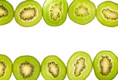 Two rows kiwi Royalty Free Stock Photography