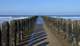 Between the two rows of poles of the breakwater Stock Photos