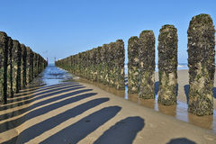 Between the two rows of poles of the breakwater Royalty Free Stock Images