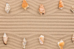 Two rows of seashells lying on the wavy sand, with space for text. Royalty Free Stock Photo