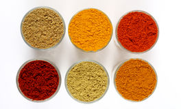 Two rows of spicy powders Stock Photography