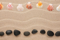 Two rows of stones and shells on the sand Royalty Free Stock Images