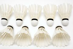 Two rows of  white shuttlecocks Stock Images