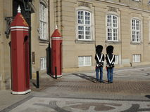 Two Royal life guards protecting the Danish Queen Stock Images
