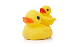 Two Rubber Ducklings Piggybacking Stock Photos