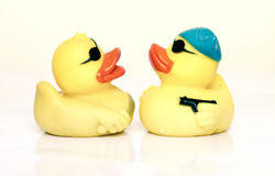 Two rubber ducks fight Stock Photos