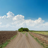 Two rural roads to horizon and clouds Stock Photography