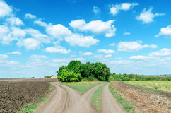 Two rural roads to horizon Royalty Free Stock Images