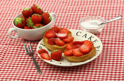 Two rusks with sugared strawberries  Stock Photography