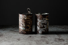 Two Rusted Cans Stock Photography