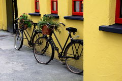 Two rustic bicycles with flower baskets leaning on red and yellow wall Stock Photos