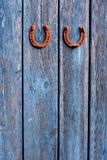 Two rusty hotseshoe lucky symbols on old blue wooden wall Stock Photo