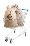 Two sacks full of euro in shopping cart Stock Images