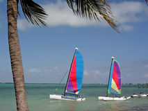 Two sailboats on the water. Pair of sailboats Stock Images