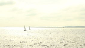 Two sailing boats. Two sailing boats are sailing on the Wadden Sea in the afternoon light stock video