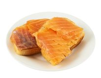 Two salmon sandwiches in a plate Royalty Free Stock Photos