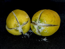 Two salted lemons ready to preserve Stock Image