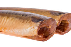 Two salted Mackerel fish without head Royalty Free Stock Photos