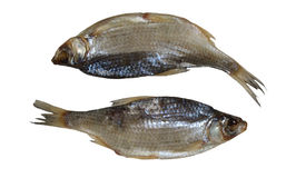 Two salted sea roach fishes Royalty Free Stock Image