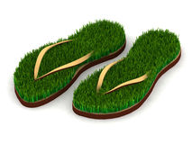 Two sandals with green grass Royalty Free Stock Photography