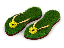 Two sandals with green grass and yellow flowers Royalty Free Stock Photo