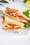 Two sandwich with ham and cheese butter spices Royalty Free Stock Photography