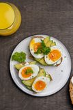 Two sandwiches with avocado and boiled egg on plate royalty free stock image