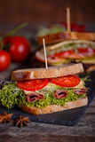 Two Sandwiches with cereals bread with lettuce,ham Stock Image