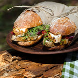 Two sandwiches with chicken at a picnic. Two sandwiches with chicken, vegetables and herbs on a picnic Royalty Free Stock Photos