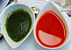 Two sauces Stock Images