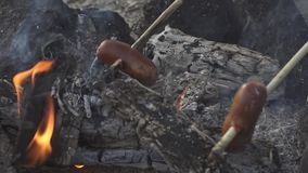 Two sausages attached to sticks are baking on flame of campfire.  stock footage