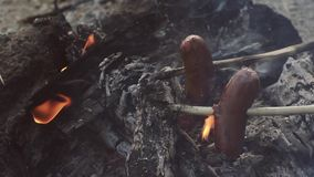 Two sausages attached to sticks are baking on small campfire.  stock video