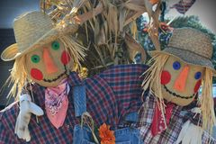 Two Scarecrows with Arms Around Each Other Stock Images