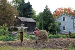 Two Scarecrows. In the vegetable garden Stock Photos