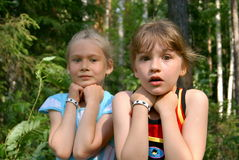Two scared girls. In the summer in wood two girlfriends were frightened of someone Royalty Free Stock Photos