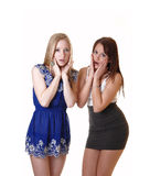 Two scared girls. Stock Photos