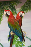Two scarlet macaws Royalty Free Stock Photography